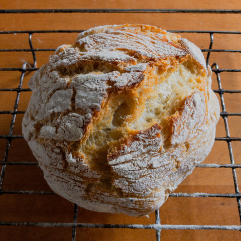 Conor's no knead bread